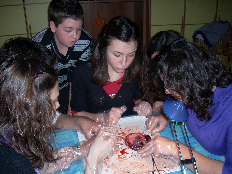 you tube video autopsia de valentin: